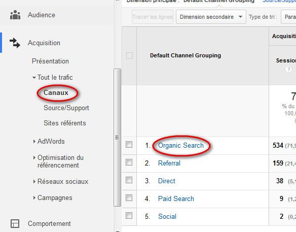 Visites organiques Google Analytics