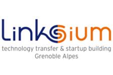 Linksium logo